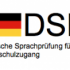 Тест DSH